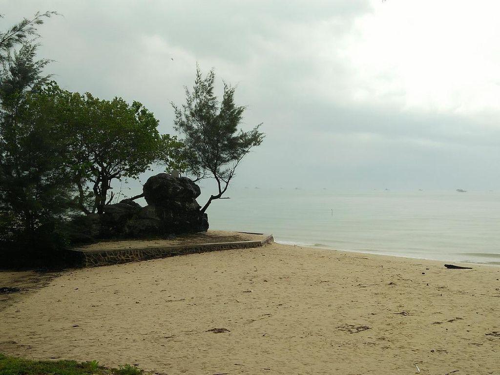 Potret Ajaib Batu Berdaun di Pantai Kepulauan Riau