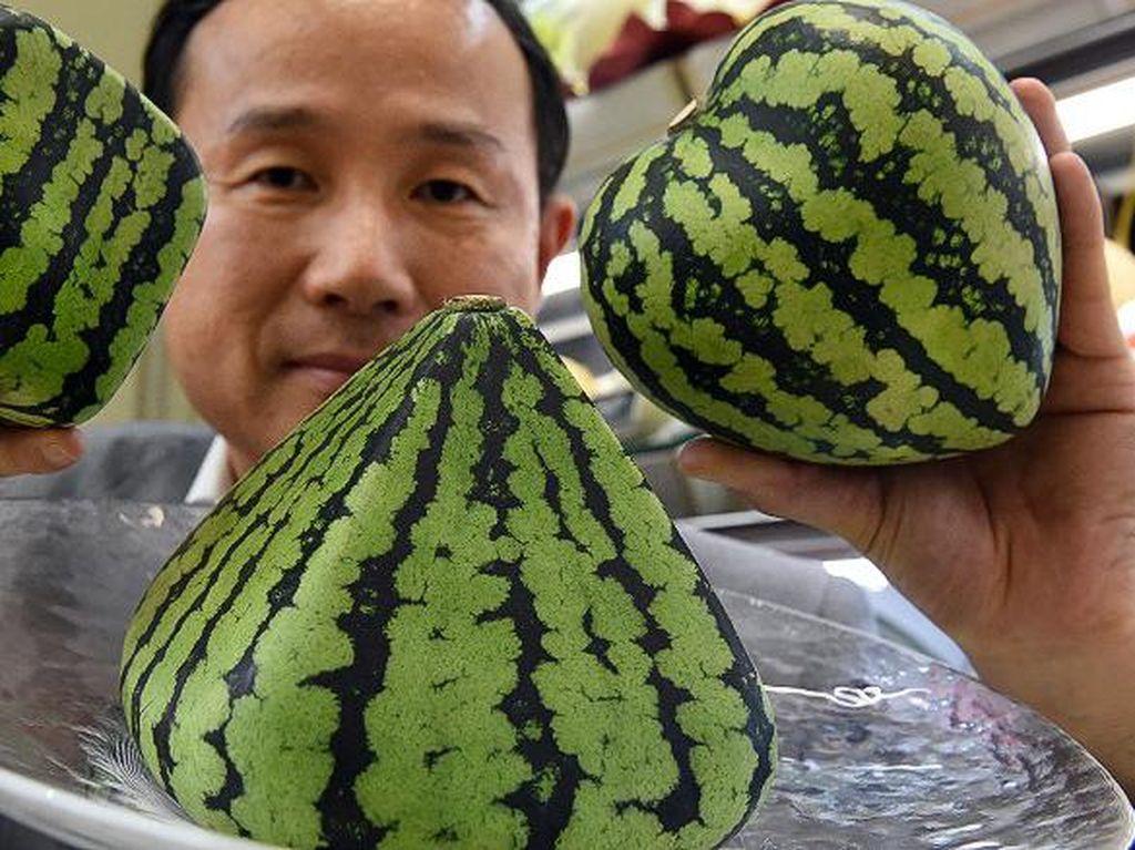 Wow! Semangka di Jepang Ini Dijual dengan Harga 336 Juta Rupiah