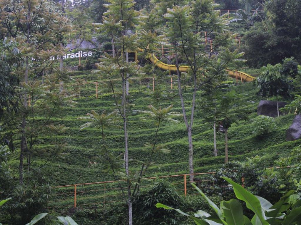 Labirin Vertikal, Destinasi Long Weekend Unik di Bandung