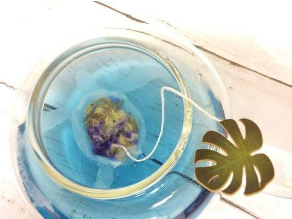 Lucunya Kantung Teh Bentuk Ikan Paus, Kura-kura hingga Teripang!