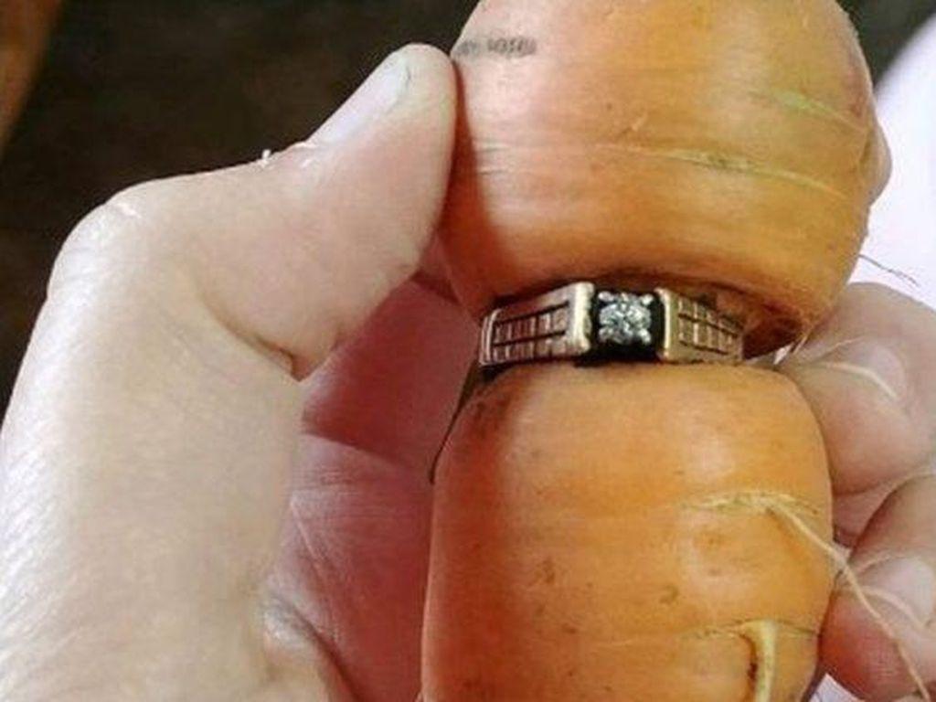 Cincin yang Tersangkut di Wortel hingga Mie Kocok Bandung yang Raos Pisan