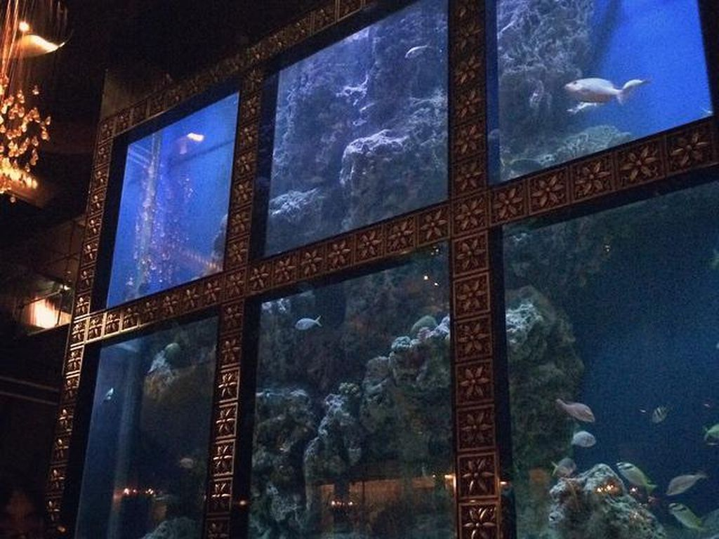 Luxis Aqua Bar & Restaurant menyediakan pengalaman bersantap mewah. Para tamu dapat menikmati pesta makan malam sambil menyaksikan ikan dalam akuarium besar di restoran tersebut. Foto: Istimewa