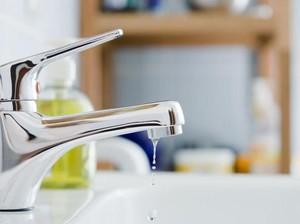 Hiii...! 15 Alat Dapur Ini Ternyata Jauh Lebih Jorok dari Dudukan Toilet