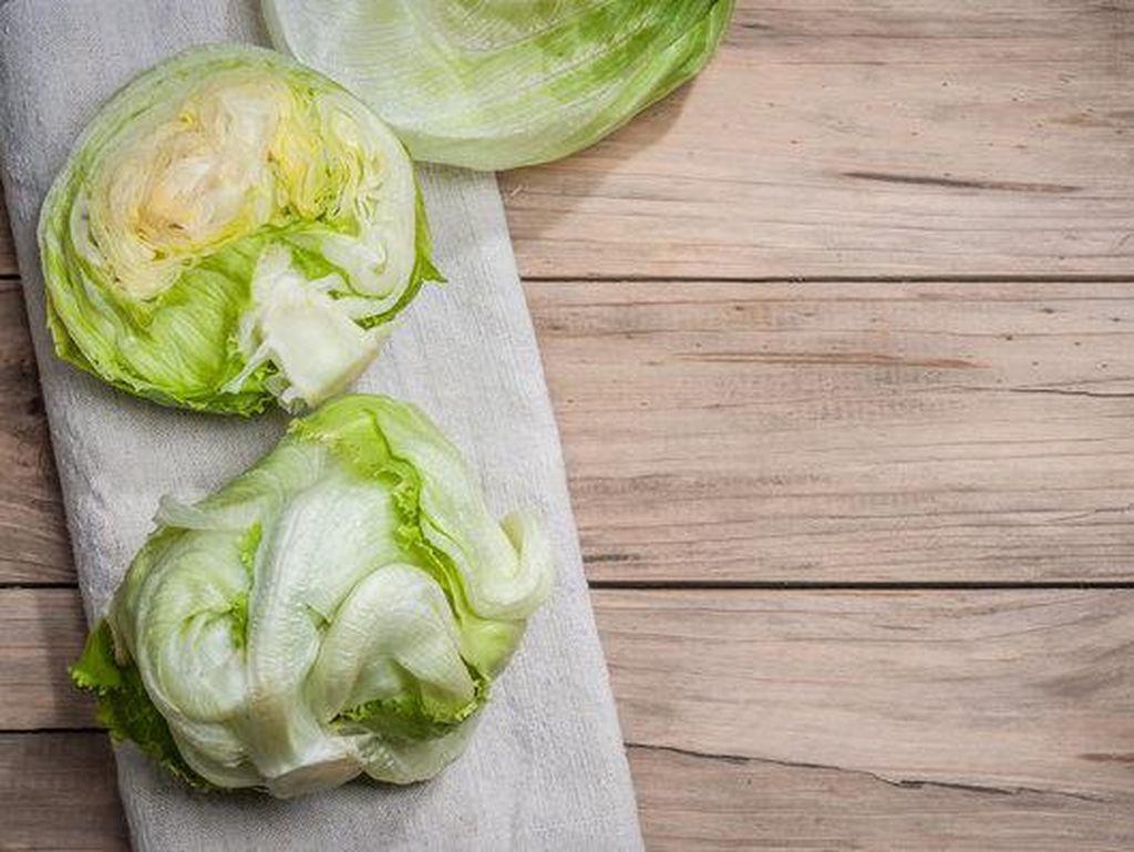 Selada bokor arau lettuce mengandung serat, kalium, seng, kalsium, folat, vitamin A, dan vitamin K. Selain itu, selada juga memiliki kandungan air yang tinggi, dan baik untuk tubuh. Foto: Getty Images