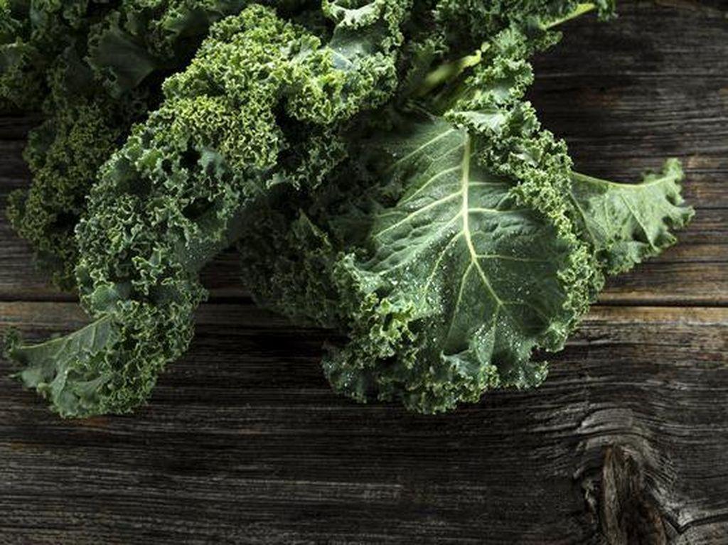 Satu cangkir kale diketahui dapat memenuhi semua kebutuhan harian tubuh seperti vitamin A, C dan K. Selain itu, kale juga memiliki tiga gram protein baik untuk tubuh. Foto: Getty Images