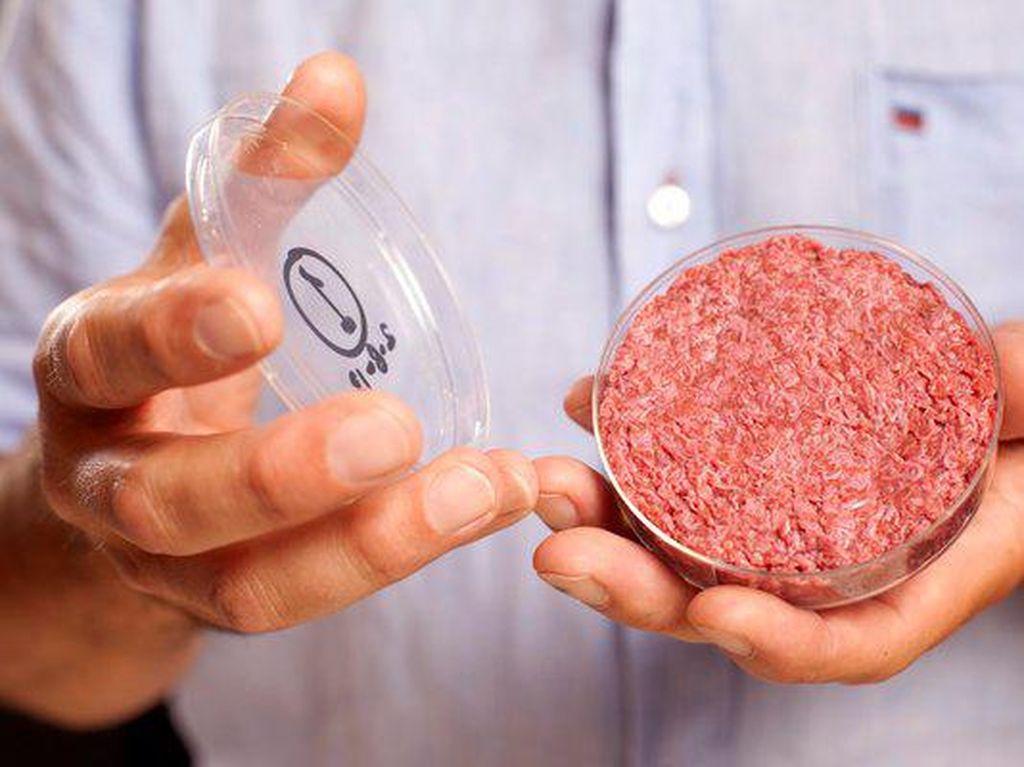 Vegetarian di seluruh dunia perlu berbangga dengan penemuan ini. Apalagi penggemar burger, bisa menikmati daging patty yang tidak dibuat dengan daging tapi dengan campuran kacang-kacangan yang ramah untuk vegan. Foto: Istimewa