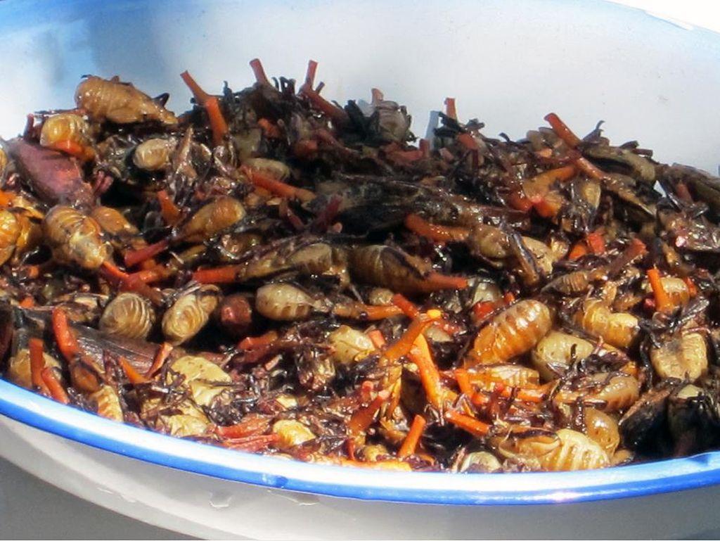 Di Madagaskar ada kumbang jerapah yang disajikan dengan cara ditumis dengan sedikit air asin dan mentega, sehingga menghasilkan potongan yang empuk dengan rasa seperti udang.