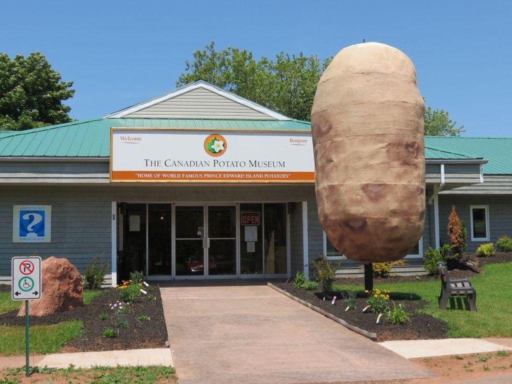 Canadian Potato Museum berlokasi Oleary, Kanada. Di sini ada mesin terkait penanaman kentang terbesar di dunia. Begitu juga pahatan kentang terbesar di dunia. PEI Potato Kitchen menyediakan pula sejumlah makanan seperti kentang panggang, kentang goreng dan sup kentang.